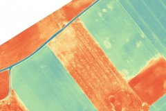ALTUM-Flug_75-75_thermal_Detail1_vs-NDVI
